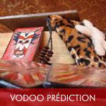 Vodoo prédictions